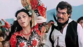 Şatra film 1976 online