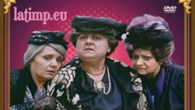 Cuibul de viespi 1987 online dvd film romanesc vechi comedie