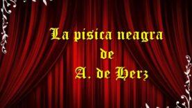 La pisica neagra de A. de Herz teatru radiofonic latimp.eu