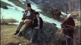 Lumina palidă a durerii online filme romanesti vechi 1981