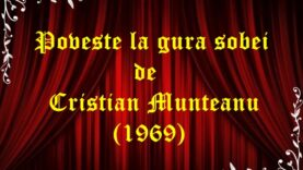 Poveste la gura sobei de Cristian Munteanu