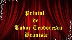 Printul de Tudor Teodorescu Braniste
