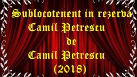 Sublocotenent in rezerva Camil Petrescu de Camil Petrescu (2018)