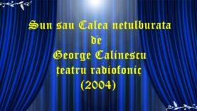 Sun sau Calea netulburata (2004) de George Calinescu teatru radiofonic latimp.eu