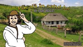 pacala in satul lui povesti audio pentru copii mp3 latimp.eu