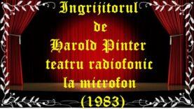 Ingrijitorul de Harold Pinter teatru radiofonic la microfon (1983) teatru latimp.eu