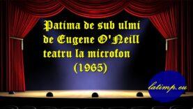 Patima de sub ulmi de Eugene O'Neill teatru la microfon(1965)teatru latimp.eu3