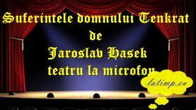 Suferintele domnului Tenkrat de Jaroslav Hasek teatru la microfon teatru latimp.eu3