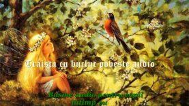 Traista cu bucluc poveste audio povesti audio pentru copii latimp.eu