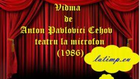 Vidma de Anton Pavlovici Cehov teatru la microfon(1986) teatru latimp.eu2