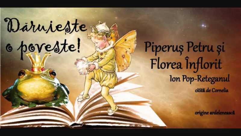 Piparus Petru si Florea Inflorit de Ion Pop Reteganul povesti audio la microfon latimp.eu