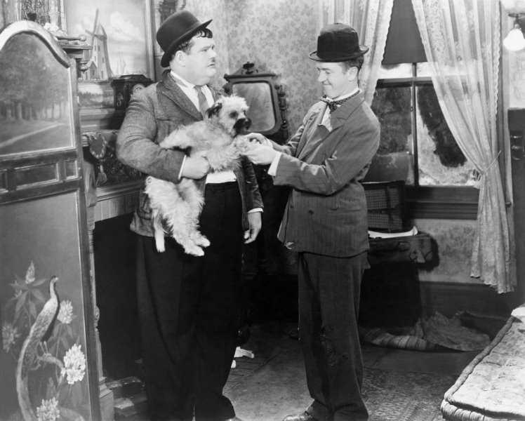 stan si bran filme online subtitrat romana Laughing Gravy 1930 laurel hardy latimp.eu