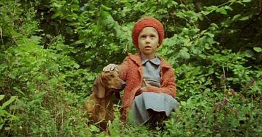 Dumbrava minunată film pentru copii după nuvela lui Mihail Sadoveanu cu acelasi nume latimp.eu